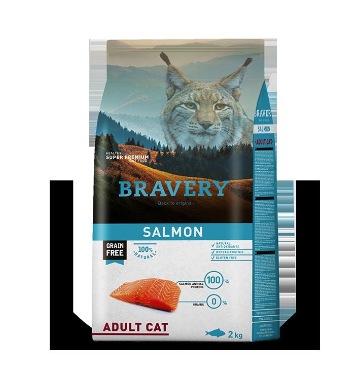 bravery_cat_salmon