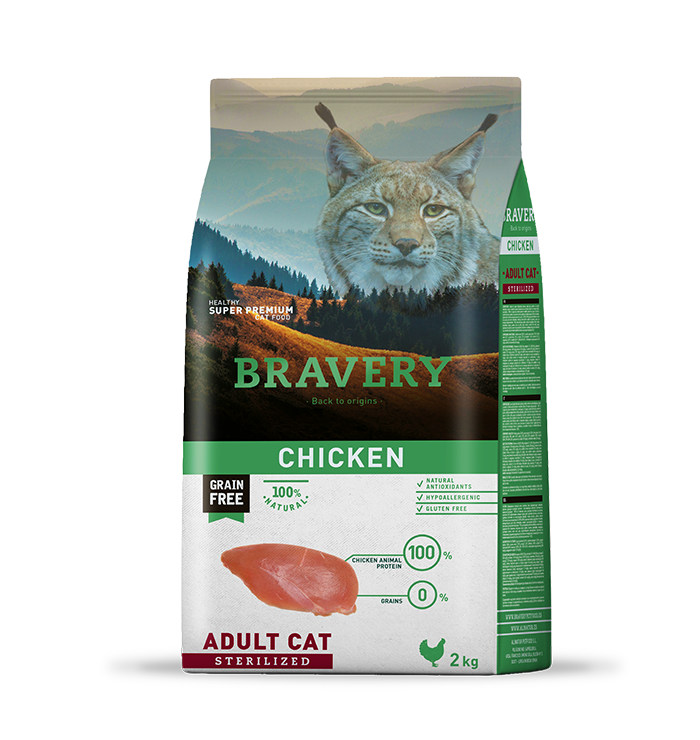 bravery_cat_sterelized_chicken