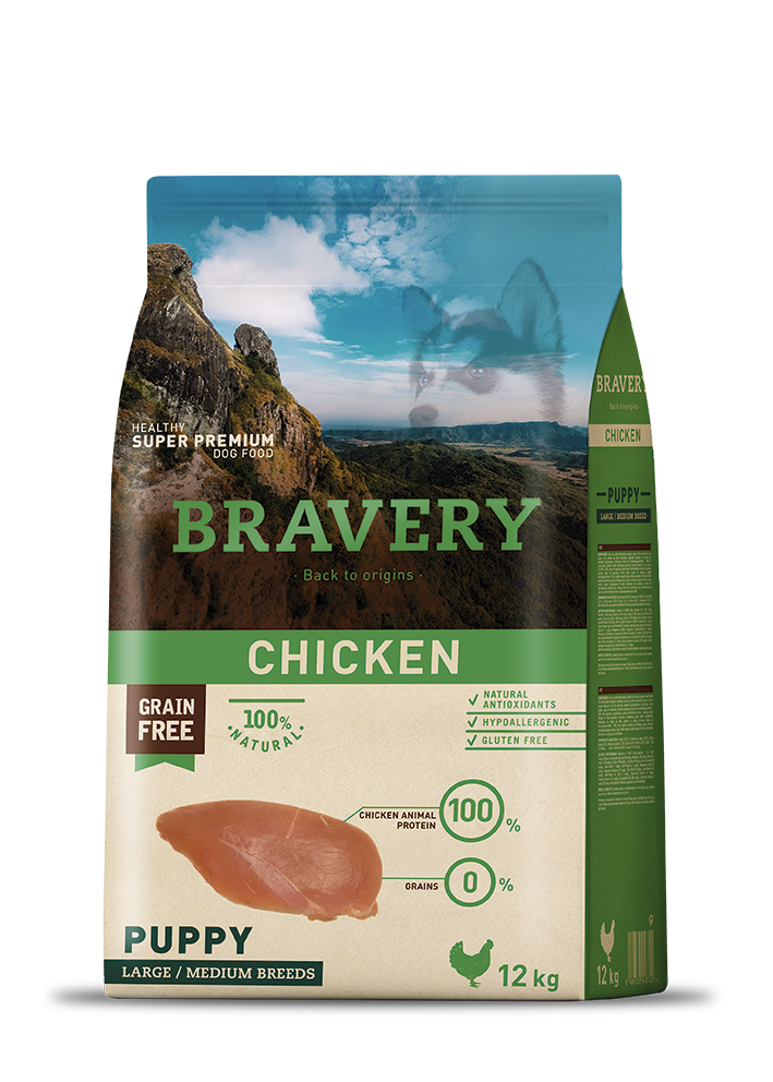 bravery_dog_chicken_puppy
