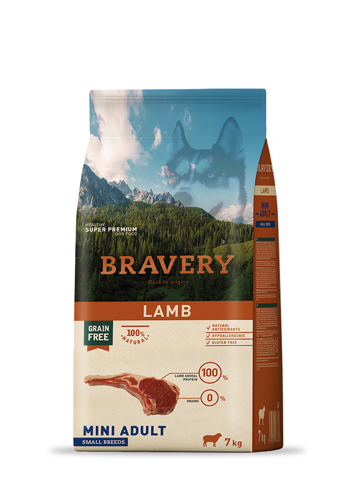bravery_dog_lamb_mini_adult