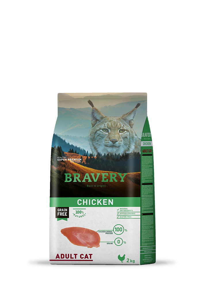 rw_bravery_cat_chicken