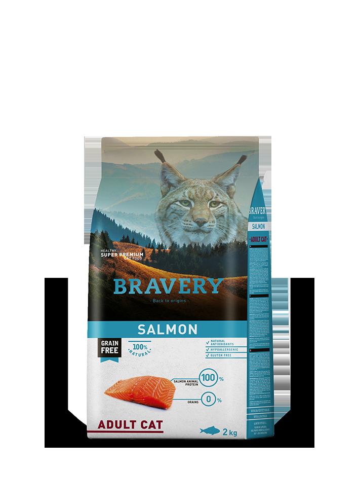 rw_bravery_cat_salmon